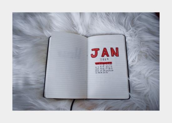 jan_bujo-3